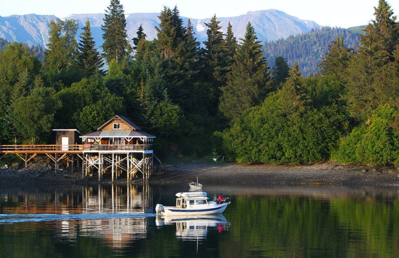 halibut-cove-boat_feature