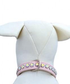 dog collar pink