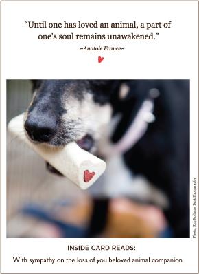 Loved Animal Pet Sympathy Card