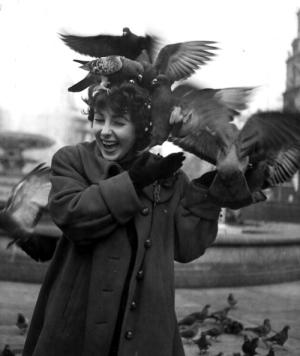British born American actress Elizabeth Taylor feeding the pigeons in Trafalgar Square, London. 1948 (Photo by Chris Ware/Getty Images)