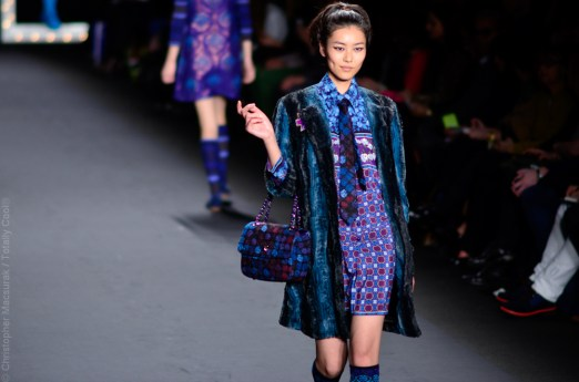 Anna Sui Fall Winter 2013-18