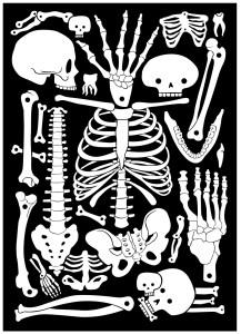 AK-LH - Crazy Bones Torchon - Tea towel