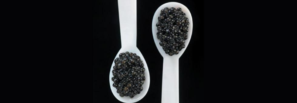 29-20-caviar-03