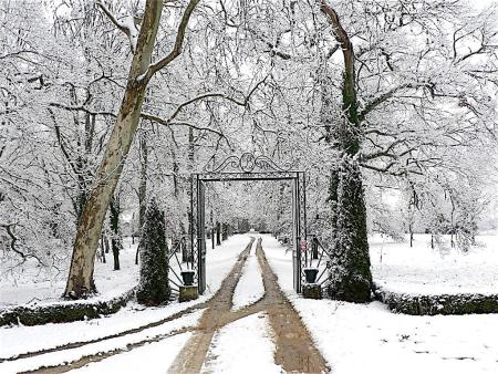 hiver-lacquy