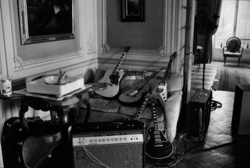 domtarle_nellcote_lapin_guitare-500x335