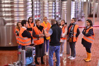 Vendanges Veuve Clicquot - photo Michel Jolyot (304)