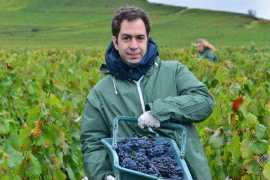 Vendanges Veuve Clicquot - photo Michel Jolyot (53)