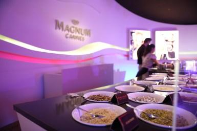 Magnum Dipping Bar