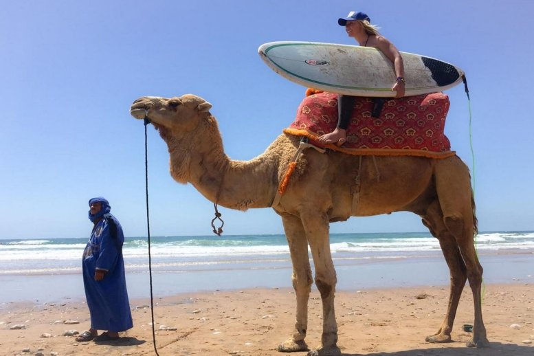 Camel+Surf