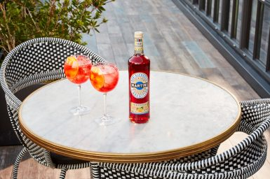 MARTINI NON-ALCOHOLIC VIBRANTE AND TONIC SUMMER (WITH BOTTLE, WITHOUT FOOD)