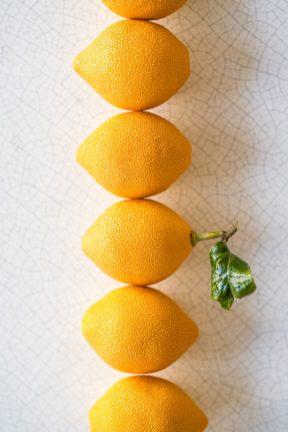 LMP-Citron-Jaune-by-Calvin-COURJON (2)