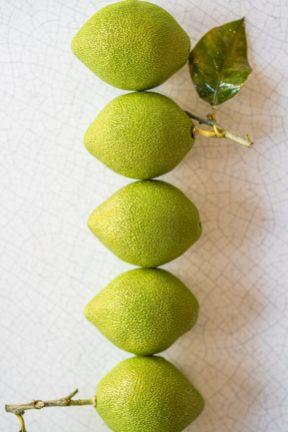 LMP-Citron-Vert-by-Calvin-COURJON (6)