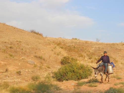 Uzbekistan-Countryside