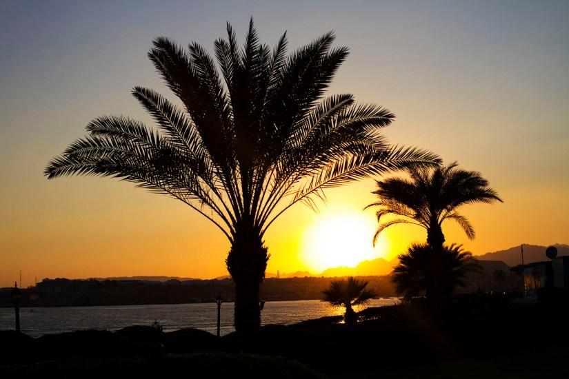 Sharm_el_Sheilk