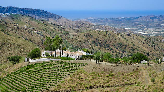 Cortijo El Carligto, the private Andalucian hideaway, bridges the gap between privately owned rental properties and exclusive hotels and resorts by offering boutique service packages and personal concierge service to rival the 5 star hotels.