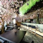 Sakura At Sake No Hana 9