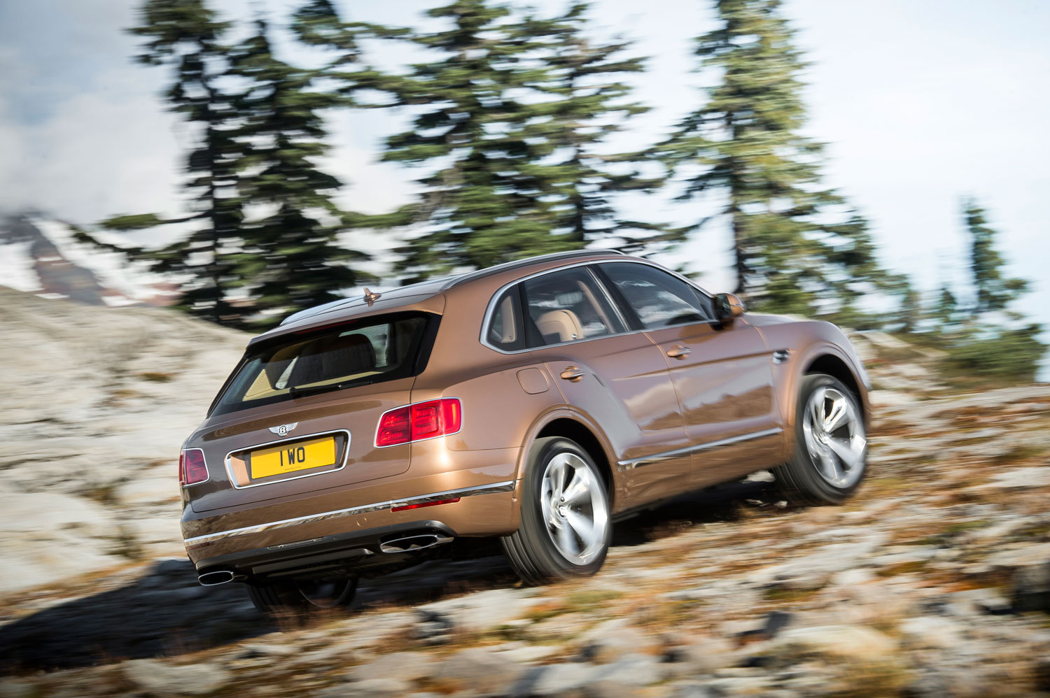 The Bentayga is unmistakeably a Bentley