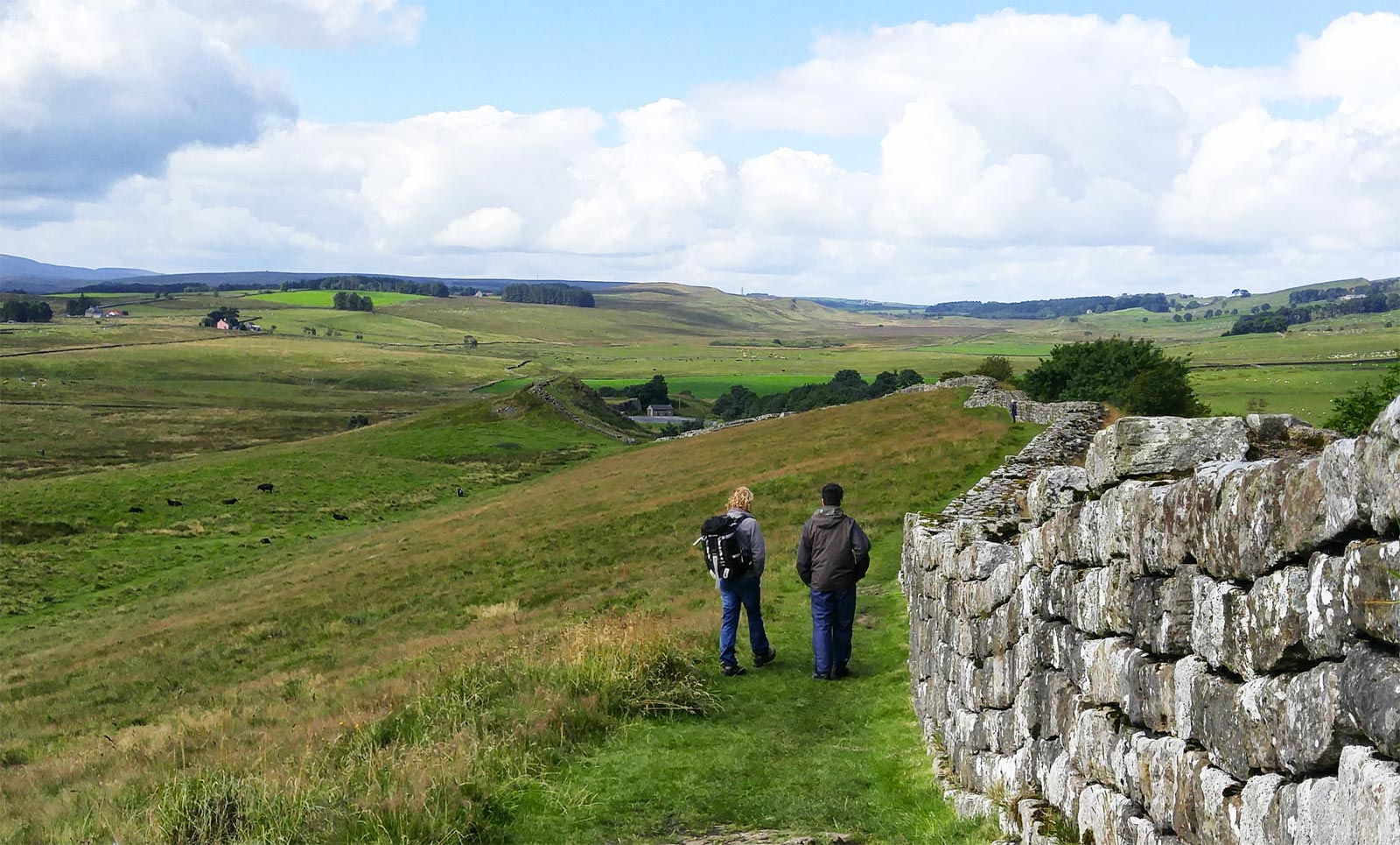 Walking the Wall with Wild Dog Outdoors in Northumberland 5