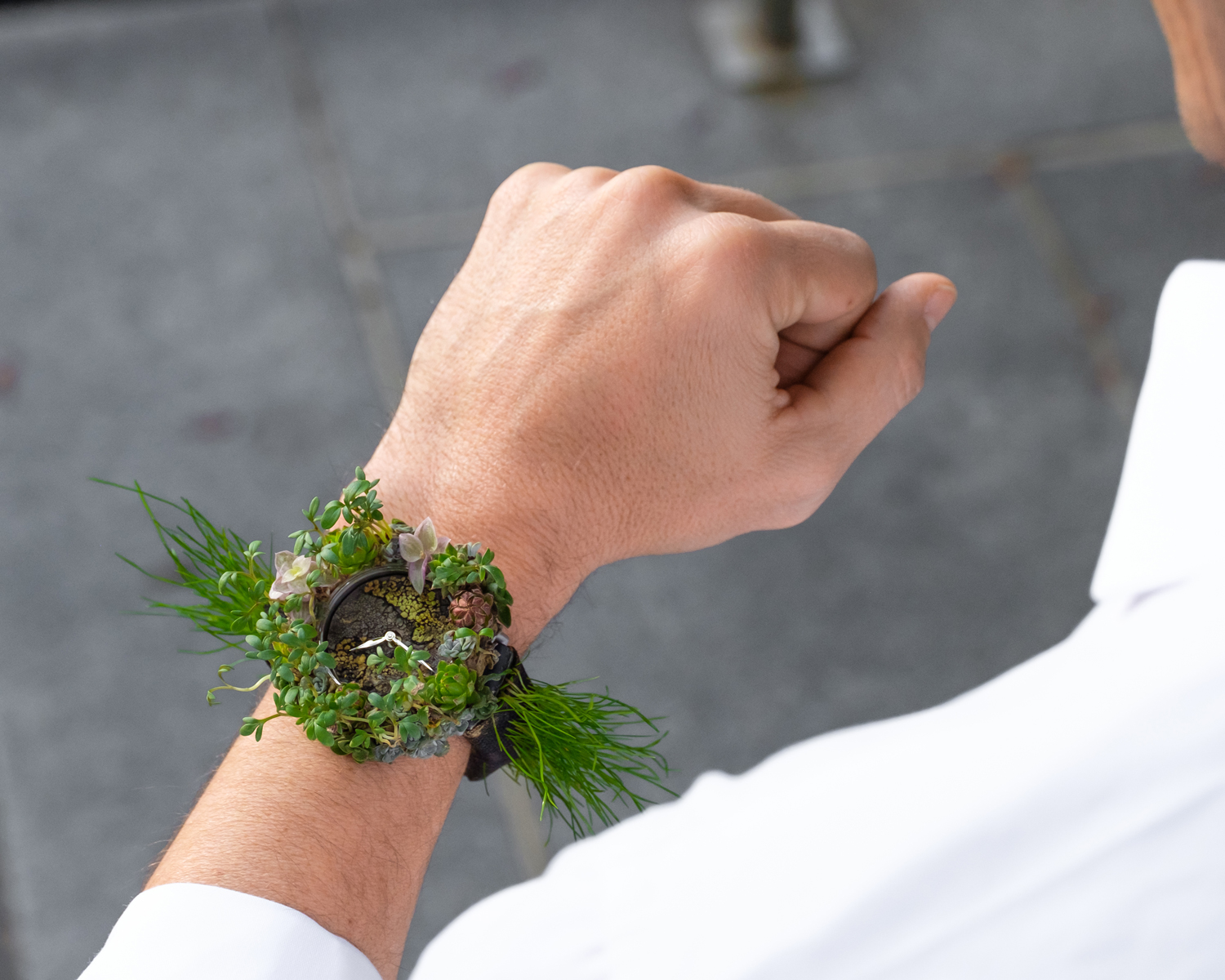 The Moser Nature Watch - A Unique Collaboration With Mother Earth 3