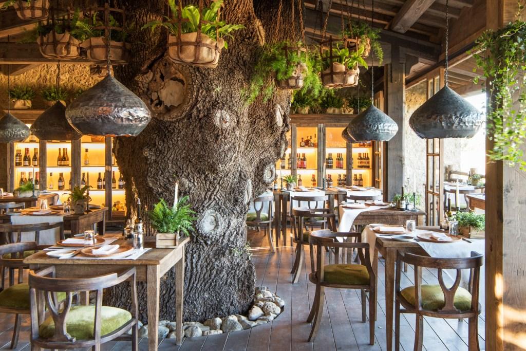 Trattoria Sull'Albero Restaurant