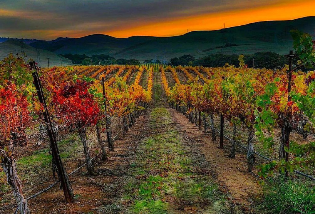 Beyond the Coast - The Ultimate Autumn California Road Trip Itinerary