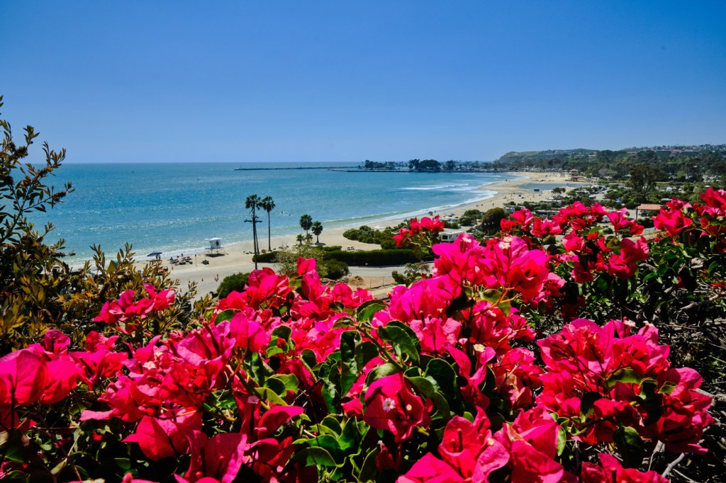 Dana Point in California