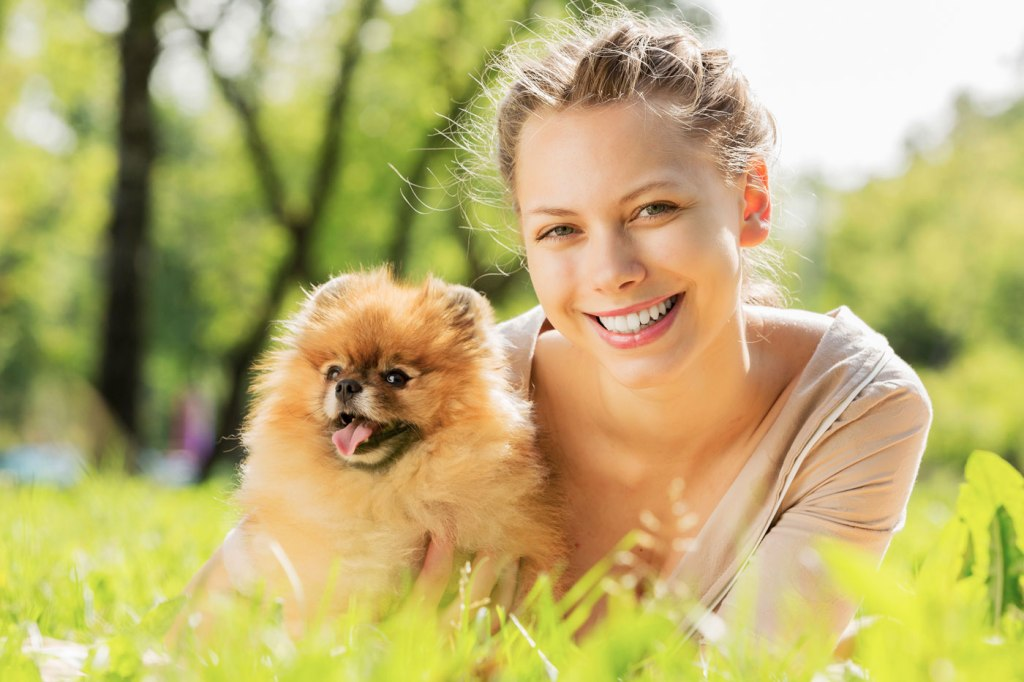 How Coronavrius Will Affect Your Dog