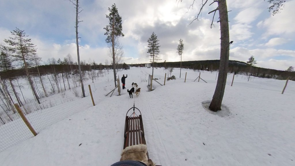 Join Erik Hordijk from Yellow Snow Husky tours