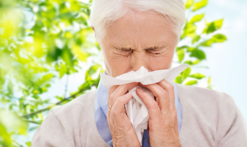 Could CBD oil be a cure for hay fever