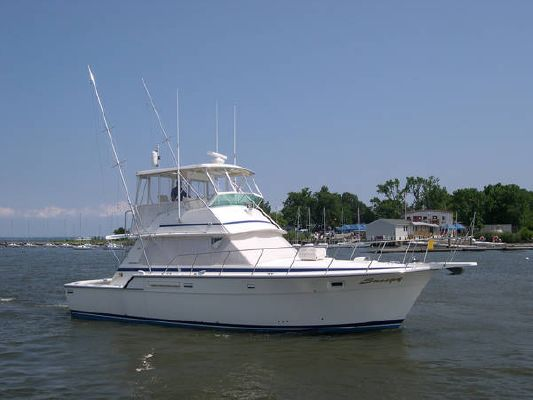 1982 Bertram Total Refit Convertible Boats Yachts For Sale