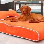Fancy Dog Beds Worth Buying Luxury Dog Beds