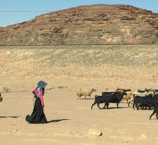 Bedouins in Jordan