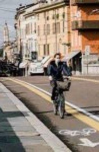los crisantemos_450x686