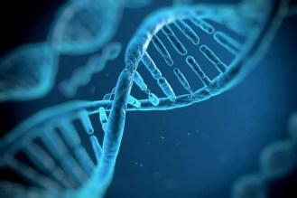 DNA in nevada criminal justice