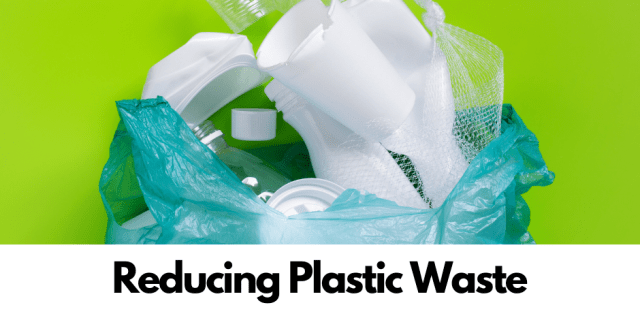 Sustainability Tip: Reducing Plastic Waste is a Win-Win