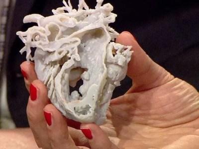 Protótipo de Coração impresso em impressora 3D sendo mostrado cortado no meio. Mão feminina segurando o protótipo.