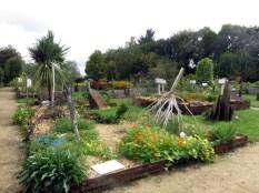 Plesse du jardin