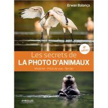 Les-secrets-de-la-photo-d-animaux