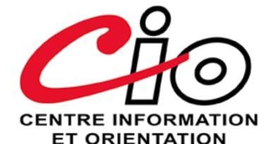 Newsletter du CIO Janvier 2021
