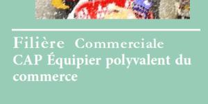 Read more about the article CAP Équipier polyvalent du commerce