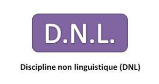 Discipline Non Linguistique en anglais