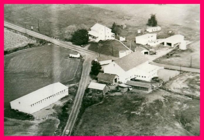 bushfarm-aerialview-1960-001