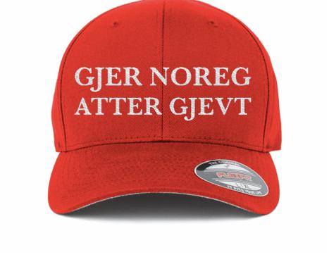 (Skjermbilde / Resett nettbutikk).