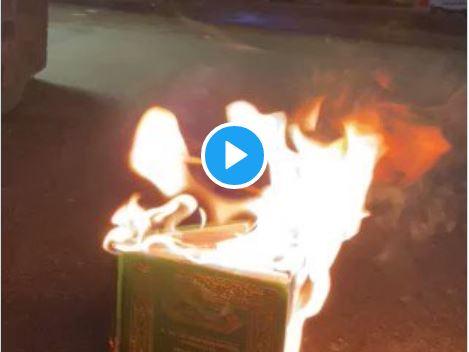(VIDEO I ARTIKKELEN).