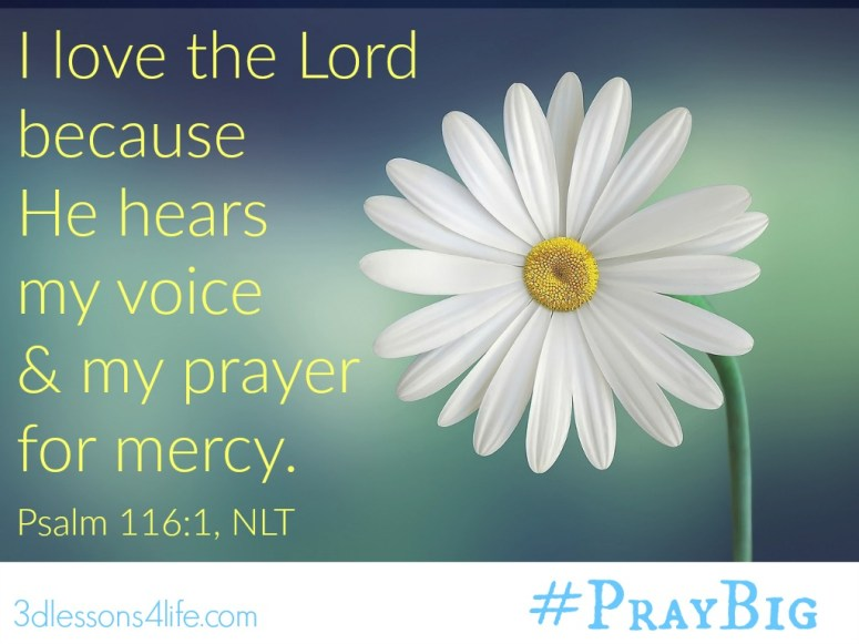 Mercy and Love