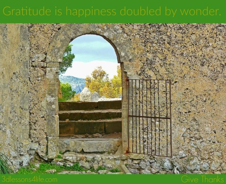 Gratitude as a Discipline