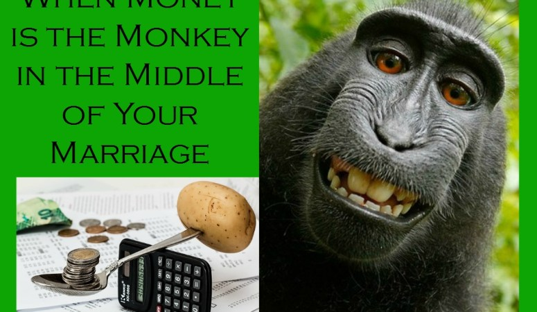 When Money  is the Monkey in the Middle of Your Marriage