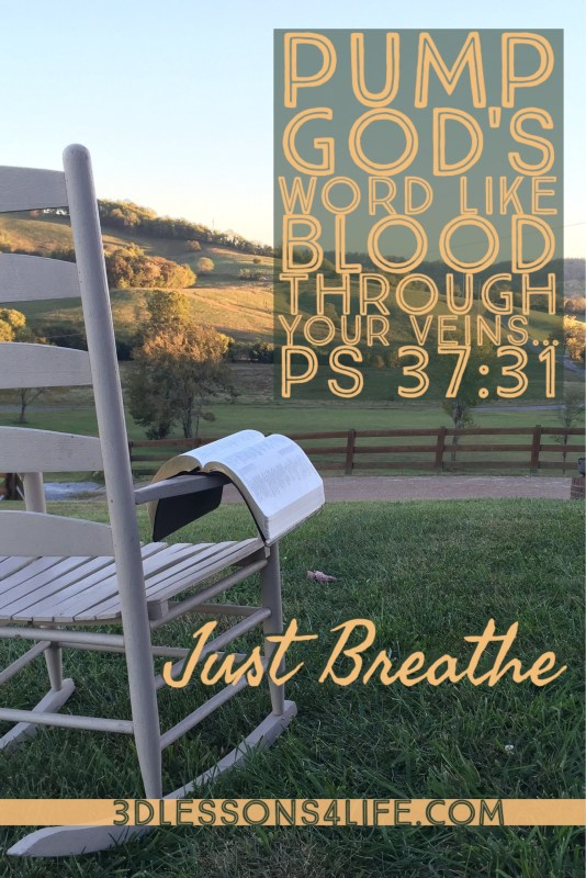 Practice Proper Breathing | Just Breathe for 31 Days - Day 2 | 3dlessons4life.com