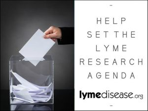 Lyme Research Agenda