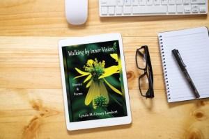 Walkinb by Inner Vision - by Lynda McKinney Lambert